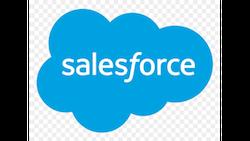 salesforce partenaire euridis business school